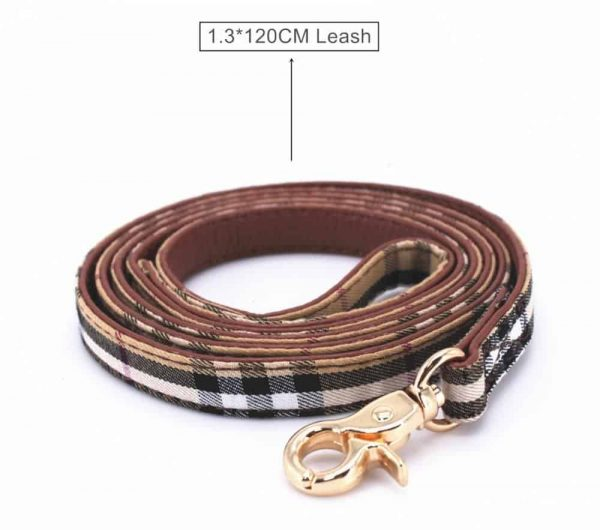 furberry-yorkie-leash-and-bowtie-collar