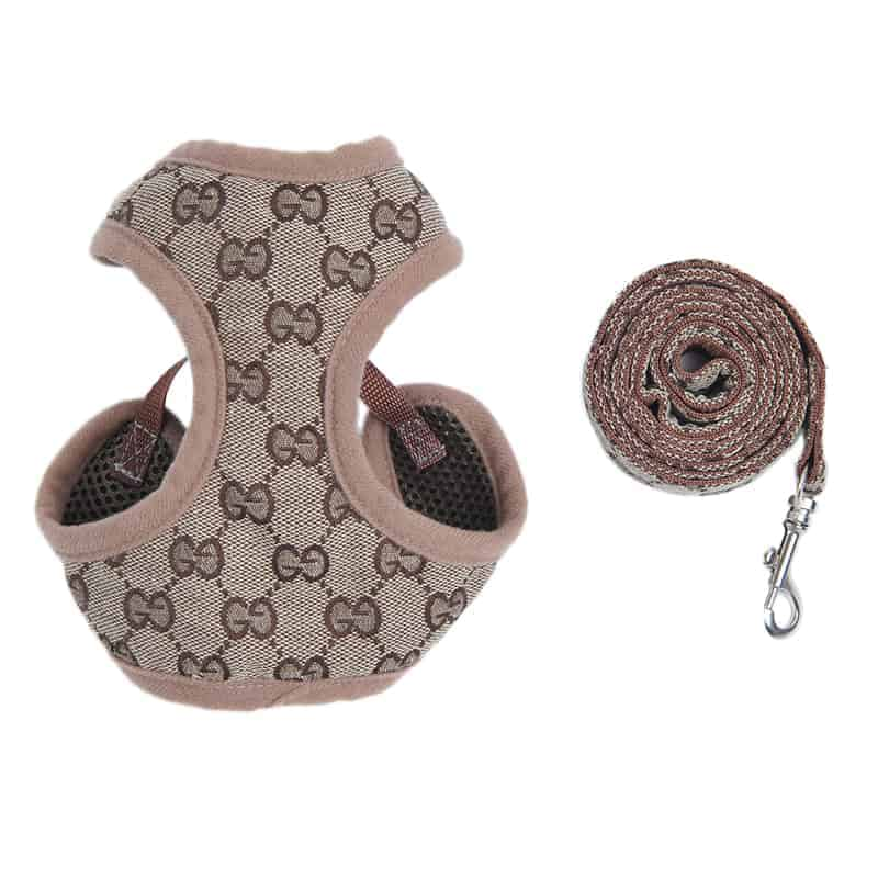 Pawcci Designer Harness With Leash Set • Yorkies Gram