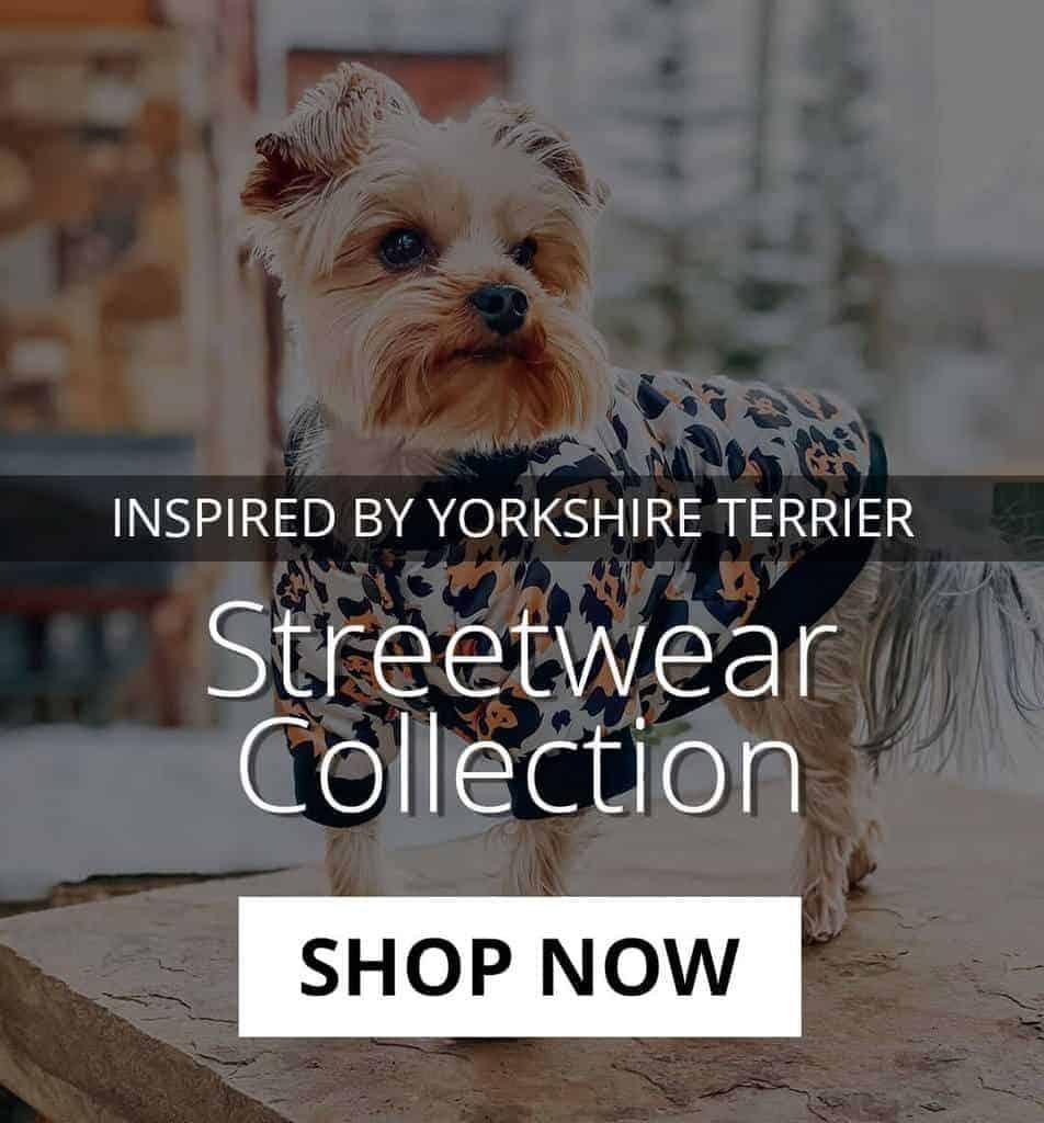 yorkies gram streetwear collection