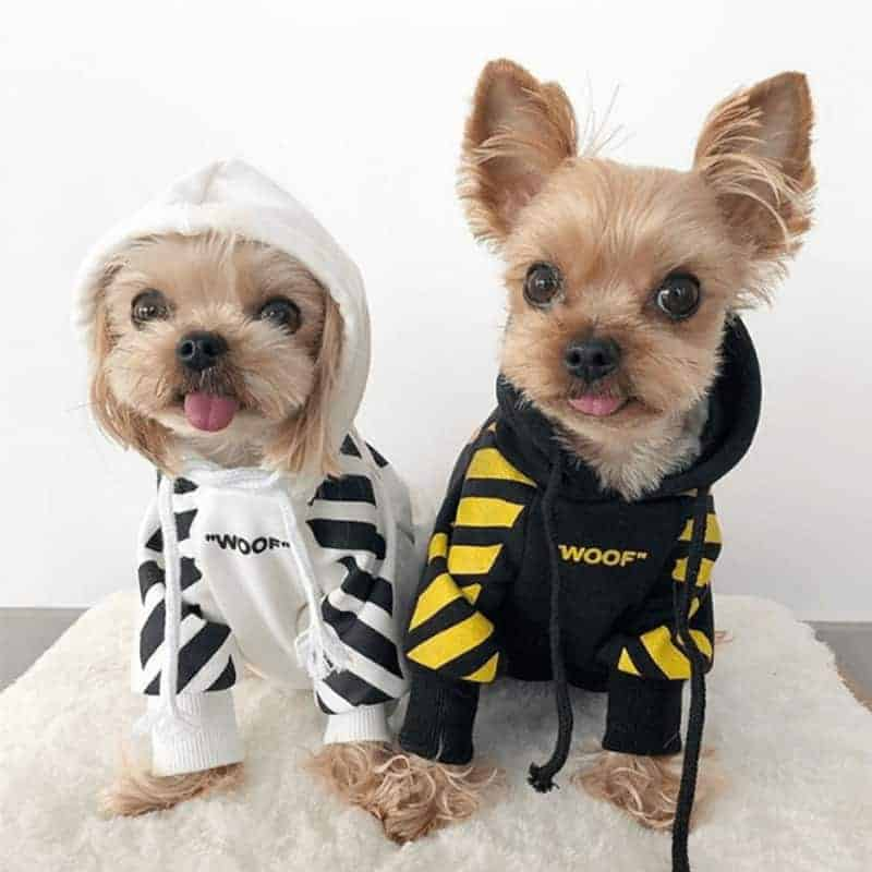 Small Dog Hoodie 'Woof' • Yorkies Gram